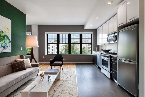 2 Bedrooms, Flatbush Rental in NYC for $4,250 - Photo 1