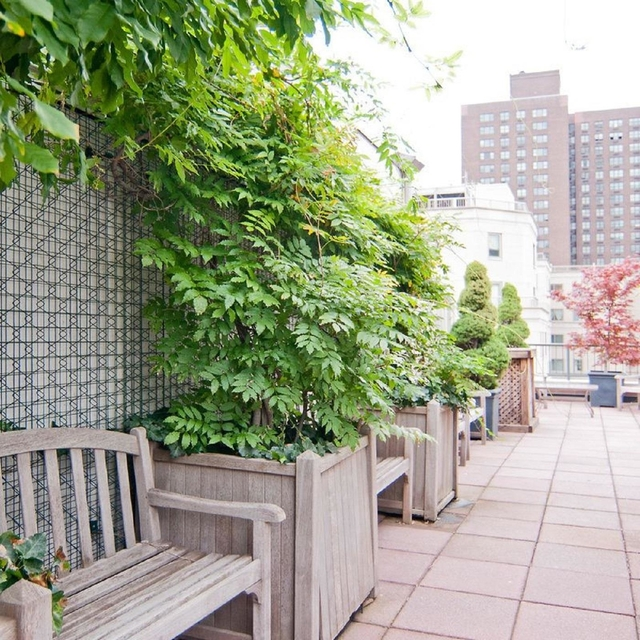 Studio, Upper East Side Rental in NYC for $4,195 - Photo 1