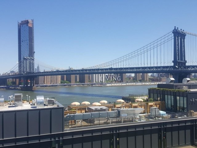 1 Bedroom, DUMBO Rental in NYC for $3,850 - Photo 2