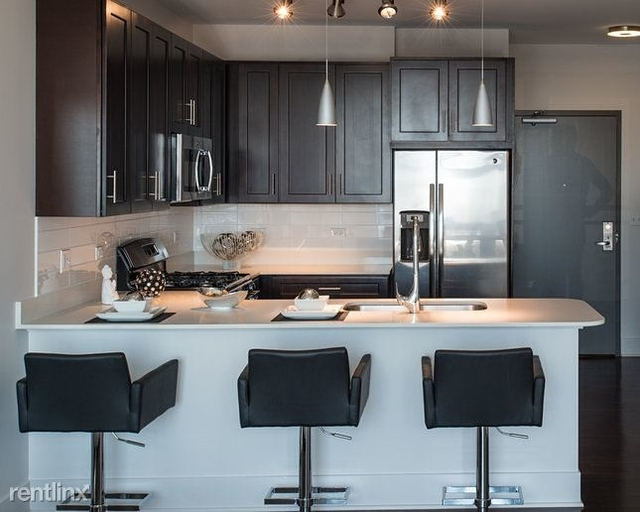 1 Bedroom, Goose Island Rental in Chicago, IL for $2,200 - Photo 1