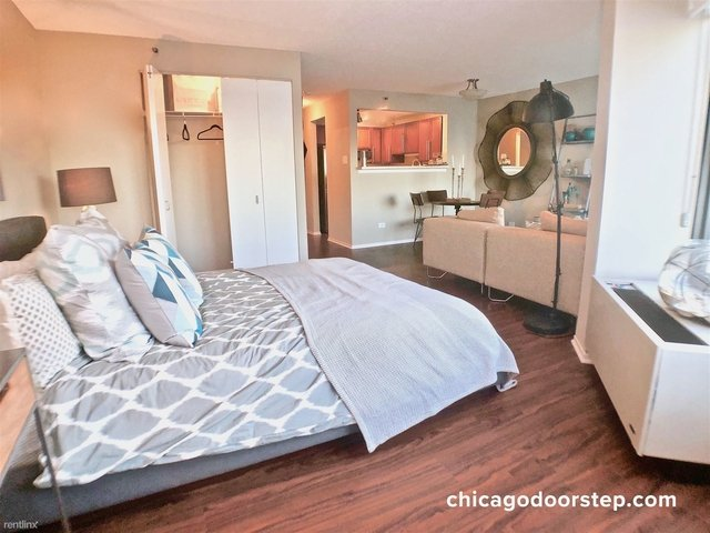 1 Bedroom, Streeterville Rental in Chicago, IL for $1,650 - Photo 1