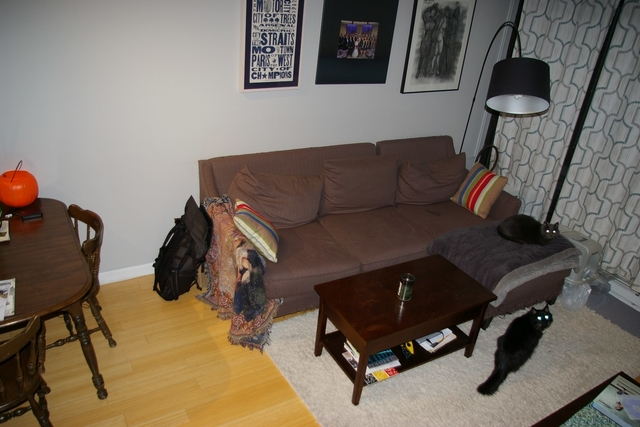 2 Bedrooms, Fenway Rental in Boston, MA for $3,325 - Photo 2