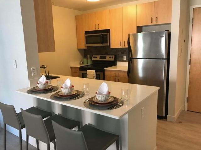 1 Bedroom, Harrison Lenox Rental in Boston, MA for $2,620 - Photo 1
