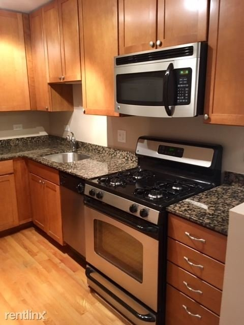 1 Bedroom, Park West Rental in Chicago, IL for $1,513 - Photo 2