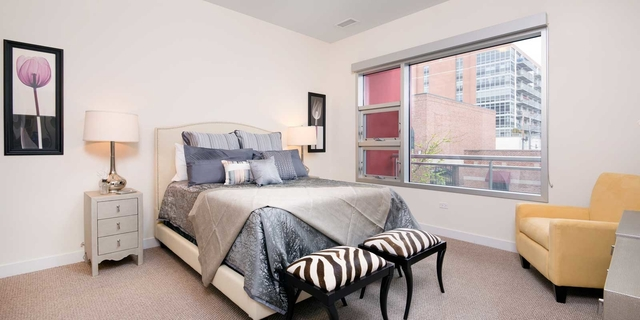 2 Bedrooms, Near West Side Rental in Chicago, IL for $2,895 - Photo 2