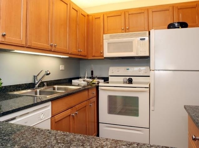 1 Bedroom, The Loop Rental in Chicago, IL for $1,668 - Photo 1