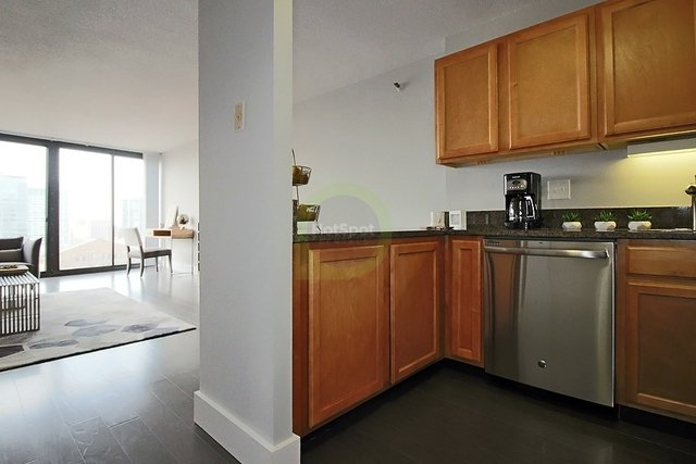 2 Bedrooms, South Loop Rental in Chicago, IL for $2,583 - Photo 1
