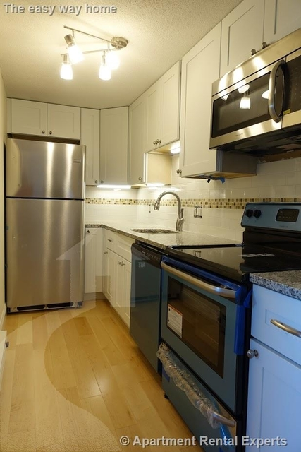 1 Bedroom, Ward Two Rental in Boston, MA for $2,650 - Photo 2