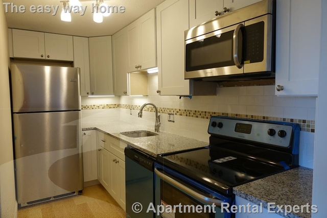 1 Bedroom, Ward Two Rental in Boston, MA for $2,650 - Photo 1