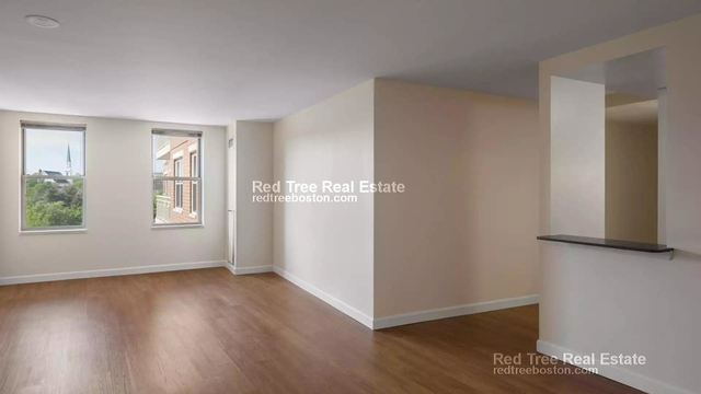 2 Bedrooms, South Side Rental in Boston, MA for $3,195 - Photo 1
