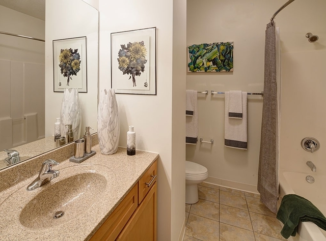 2BR at 900 S Clark St - Photo 16