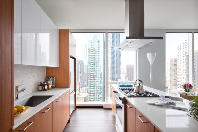 Studio, Streeterville Rental in Chicago, IL for $1,610 - Photo 1