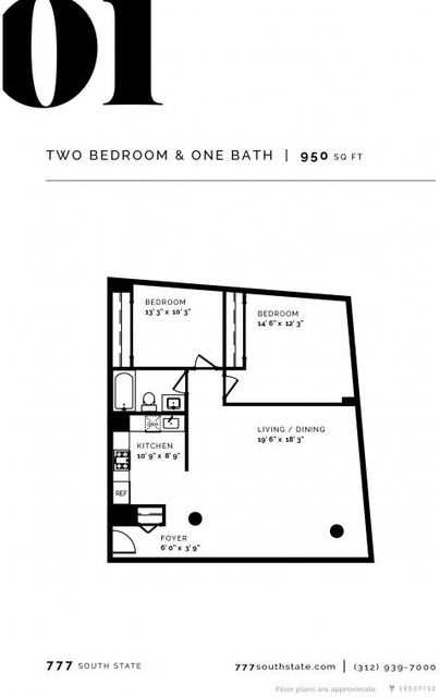 2 Bedrooms, South Loop Rental in Chicago, IL for $2,450 - Photo 1