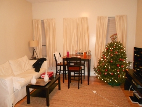 2 Bedrooms, Kenmore Rental in Boston, MA for $3,202 - Photo 1