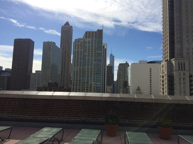 1 Bedroom, Gold Coast Rental in Chicago, IL for $1,420 - Photo 1