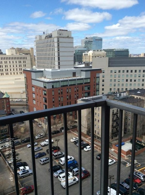 1 Bedroom, Mission Hill Rental in Boston, MA for $2,505 - Photo 1