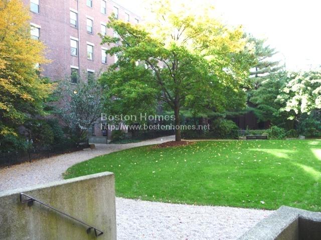 2 Bedrooms, Lower Roxbury Rental in Boston, MA for $3,900 - Photo 1