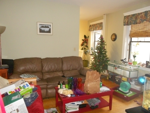 1 Bedroom, Commonwealth Rental in Boston, MA for $2,100 - Photo 2