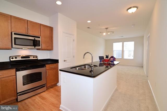 2 Bedrooms, Fair Oaks Rental in Washington, DC for $2,060 - Photo 1
