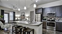 1 Bedroom, Montrose Rental in Houston for $1,375 - Photo 1
