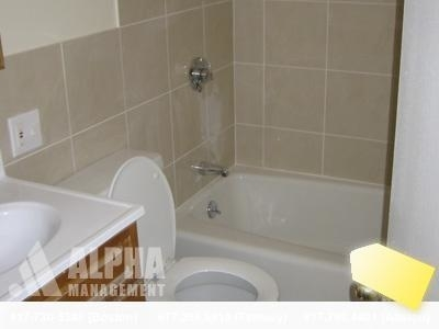 4 Bedrooms, Brookline Village Rental in Boston, MA for $4,600 - Photo 2