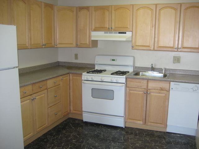 1 Bedroom, Kenmore Rental in Boston, MA for $3,100 - Photo 2
