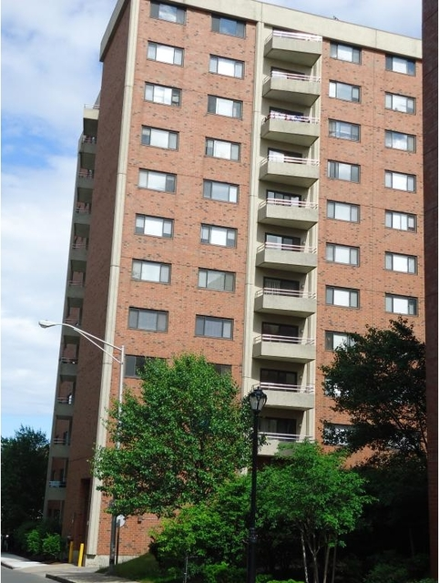 1 Bedroom, Malden Center Rental in Boston, MA for $1,900 - Photo 2