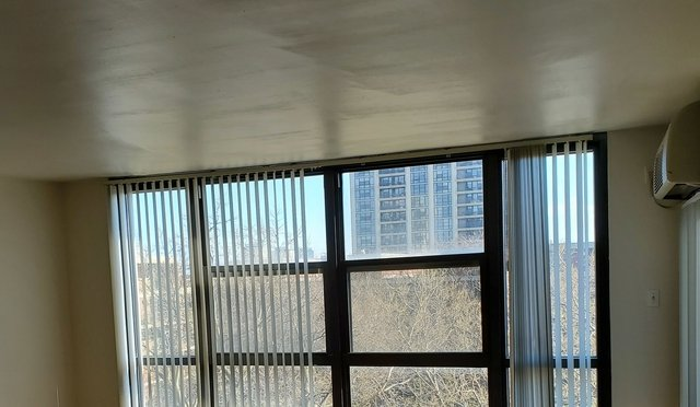 1 Bedroom, South Commons Rental in Chicago, IL for $1,275 - Photo 2