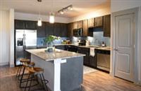 1 Bedroom, Oak Lawn Rental in Dallas for $1,225 - Photo 1