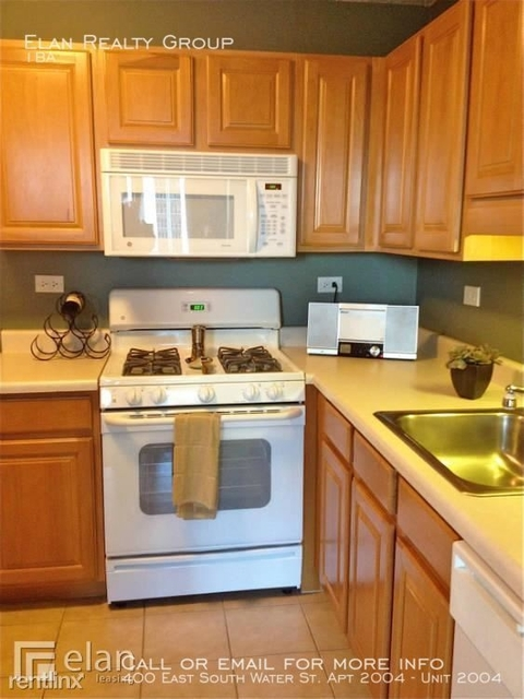 Studio, Near East Side Rental in Chicago, IL for $2,320 - Photo 1