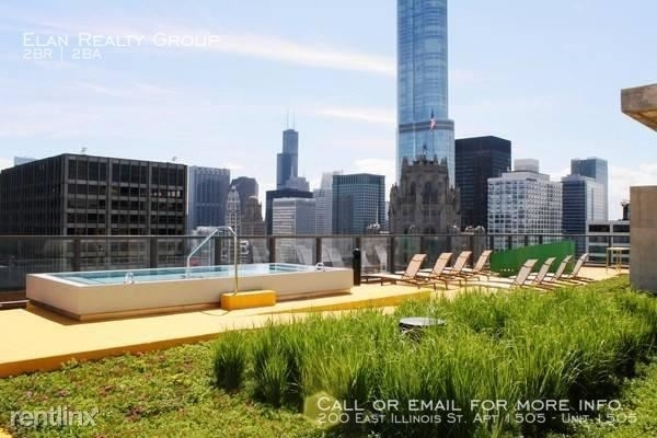 2 Bedrooms, Streeterville Rental in Chicago, IL for $3,138 - Photo 2