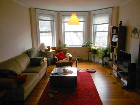 2 Bedrooms, Coolidge Corner Rental in Boston, MA for $3,800 - Photo 2
