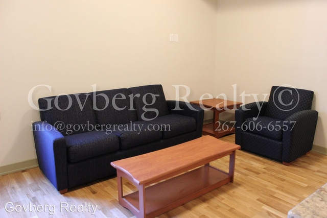 1 Bedroom, Avenue of the Arts North Rental in Philadelphia, PA for $925 - Photo 2