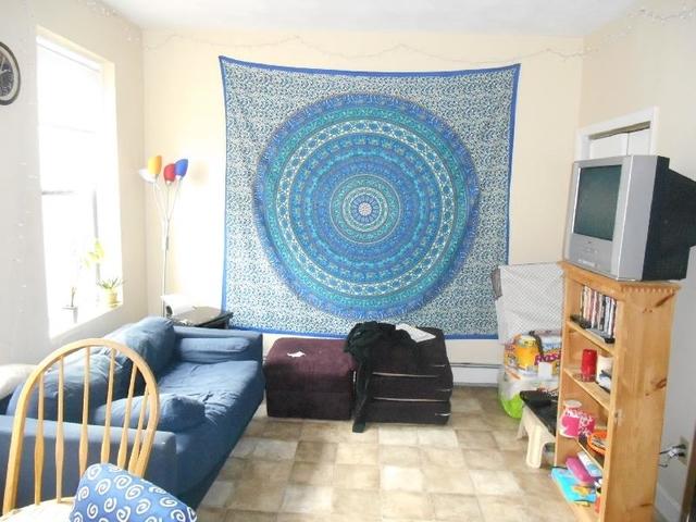 1 Bedroom, North Allston Rental in Boston, MA for $1,795 - Photo 1