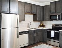 1 Bedroom, Aspen Club Rental in Houston for $895 - Photo 1