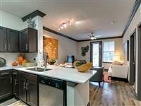 2 Bedrooms, Northeast Dallas Rental in Dallas for $1,395 - Photo 1