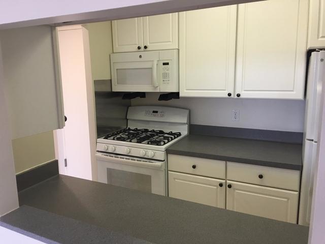 1 Bedroom, Huron Village Rental in Boston, MA for $2,738 - Photo 1