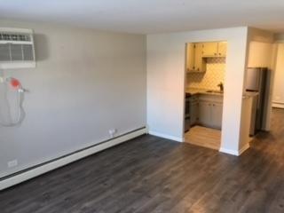1 Bedroom, Oak Park Rental in Chicago, IL for $1,100 - Photo 2