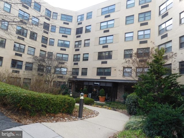 Studio, Lanier Heights Rental in Washington, DC for $1,650 - Photo 1