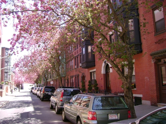 2 Bedrooms, Bay Village Rental in Boston, MA for $2,700 - Photo 1