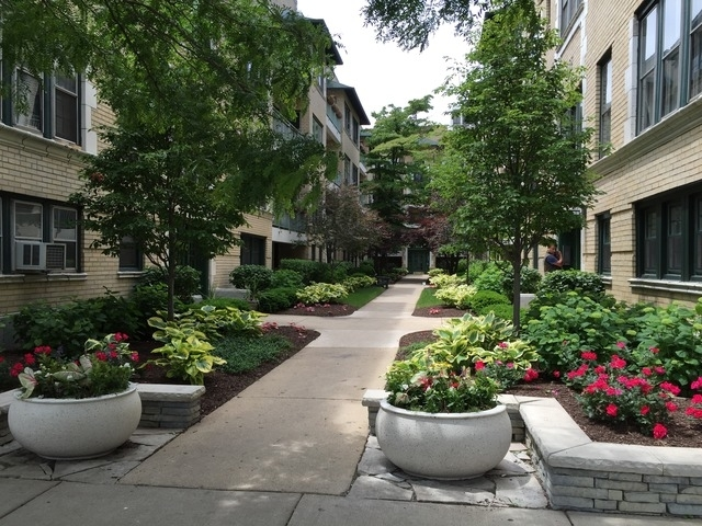 1 Bedroom, Buena Park Rental in Chicago, IL for $1,450 - Photo 1