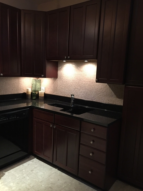 1 Bedroom, Buena Park Rental in Chicago, IL for $1,450 - Photo 2