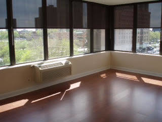 1 Bedroom, Douglas Rental in Chicago, IL for $1,350 - Photo 2