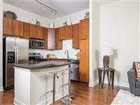 1 Bedroom, Midtown Rental in Houston for $1,195 - Photo 1