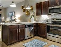 1 Bedroom, Midtown Rental in Houston for $1,100 - Photo 1