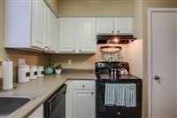 2 Bedrooms, Tallow Wood Rental in Houston for $1,150 - Photo 1