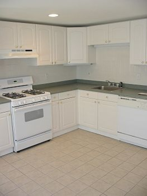 3 Bedrooms, Ward Two Rental in Boston, MA for $3,700 - Photo 2