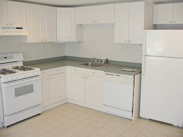 3 Bedrooms, Ward Two Rental in Boston, MA for $3,700 - Photo 1