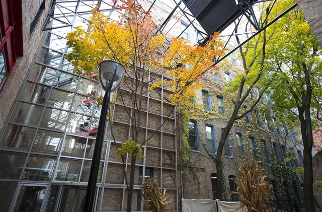 2 Bedrooms, Old Town Rental in Chicago, IL for $3,250 - Photo 2