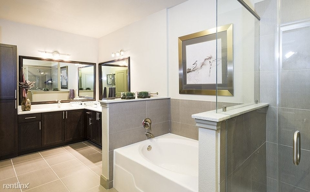 1 Bedroom, Greenway - Upper Kirby Rental in Houston for $1,300 - Photo 2